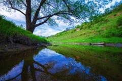 Ajardine com rocha, árvore e rio no por do sol Fotografia de Stock
