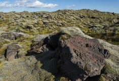 Ajardine com a rocha da lava e o campo de lava cobertos com o musgo em um fundo, Islândia Fotografia de Stock