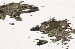 Ajardine com rochas e neve no dia ensolarado Imagem de Stock
