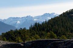 Ajardine com rochas, floresta e as montanhas cobertos de neve Foto de Stock Royalty Free