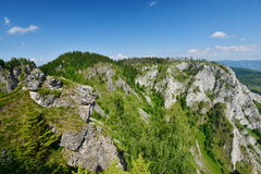 Ajardine com roscks, árvores, floresta, montanhas de Scarita-Belioara Foto de Stock Royalty Free