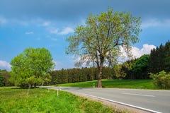 Ajardine com a rua na área de Harz, Alemanha Fotos de Stock Royalty Free