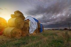 Ajardine com um campo completo de pacotes de feno no por do sol Foto de Stock Royalty Free