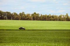 Ajardine com um carro clássico da equitação em uma estrada secundária Imagem de Stock Royalty Free