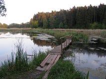 Ajardine com um lago, campo, árvores Foto de Stock Royalty Free