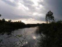Ajardine com um lago, campo, árvores Fotos de Stock