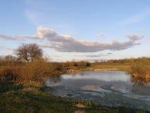 Ajardine com um lago, campo, árvores Foto de Stock