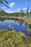 Ajardine com um lago e as montanhas ao longo dos bancos. Fotos de Stock