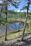 Ajardine com um lago e as montanhas ao longo dos bancos Imagem de Stock Royalty Free