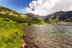 Ajardine com um lago glacial nas montanhas de Fagaras Foto de Stock