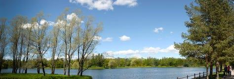Ajardine com um lago, os álamos e as passagens Foto de Stock