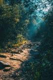 Ajardine com um trajeto na montanha iluminada Fotos de Stock