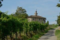 ajardine com um vinhedo perto de uma igreja e uma estrada no campo Foto de Stock