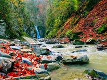 Ajardine com uma cachoeira e um rio da montanha no outono Foto de Stock