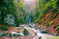 Ajardine com uma cachoeira e um rio da montanha no outono Foto de Stock Royalty Free