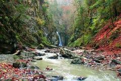 Ajardine com uma cachoeira e um rio da montanha no outono Fotografia de Stock Royalty Free