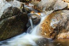 Ajardine com uma cachoeira em um dia de verão Fotos de Stock Royalty Free