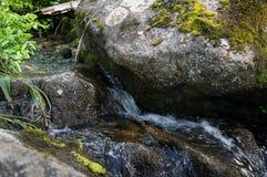 Ajardine com uma cachoeira em um dia de verão Imagens de Stock