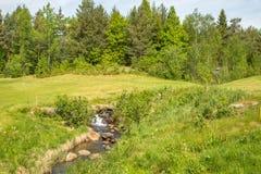 Ajardine com uma cachoeira pequena em um campo de golfe com grama verde, floresta, árvores Fotografia de Stock