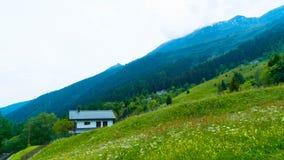 Ajardine com uma casa em um prado verde Fotos de Stock Royalty Free