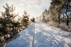 Ajardine com uma estrada bonita na neve Foto de Stock Royalty Free