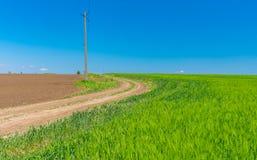 Ajardine com uma estrada de terra entre campos agrícolas em Ucrânia central Foto de Stock