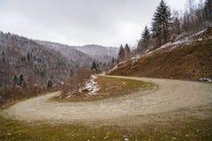 Ajardine com uma estrada de terra na inversão de marcha nas montanhas com pinho Foto de Stock