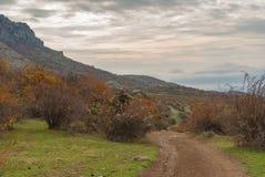 Ajardine com uma estrada de terra no pasto Demerdzhi da montanha, península crimeana Fotos de Stock
