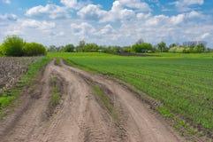 Ajardine com uma estrada de terra perto do campo agrícola Foto de Stock Royalty Free