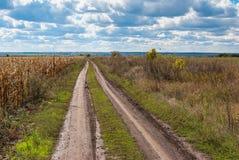 Ajardine com uma estrada de terra perto do campo de milho no ucraniano rural Imagens de Stock Royalty Free