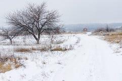 Ajardine com uma estrada de terra que conduz à casa só em Ucrânia central Fotos de Stock