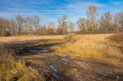 Ajardine com uma estrada suja através do prado da água no oblast de Poltavskaya, Ucrânia Fotos de Stock
