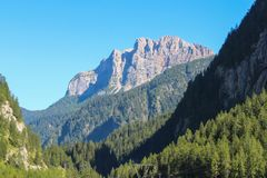 Ajardine com uma floresta verde, umas montanhas e um céu azul Fotos de Stock