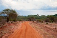 Ajardine com uma maneira vermelha através do savana Foto de Stock