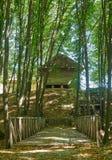 Ajardine com uma ponte de madeira através da ravina na floresta Foto de Stock