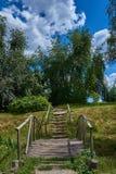 Ajardine com uma ponte de madeira, escadas, árvores contra o s azul Fotografia de Stock Royalty Free