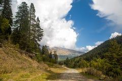 Ajardine com uma vista das montanhas com árvores e uma estrada Imagem de Stock Royalty Free