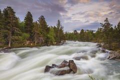 Ajardine com uma vista do rio da montanha e Foto de Stock Royalty Free