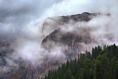 Ajardine com uma vista em montanhas na névoa Imagem de Stock Royalty Free
