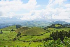 Ajardine com vacas, Sao Miguel, as ilhas de Açores, Portugal Imagens de Stock