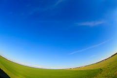 Ajardine com verão do campo verde e do céu azul Foto de Stock Royalty Free