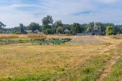Ajardine com vila pequena Mala Rublivka no oblast de Poltavskaya, Ucrânia Fotografia de Stock Royalty Free