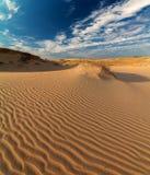 Ajardine com vistas da duna de areia no deserto Fotografia de Stock