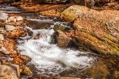 Ajardine com whitewater nas montanhas, outono Imagens de Stock