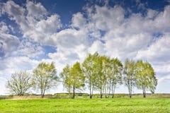 Ajardine con algunos árboles y nubes en un cielo azul Imágenes de archivo libres de regalías