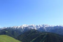 ajardine con el bosque de la montaña y la montaña capsulada nieve debajo del cielo azul Fotografía de archivo