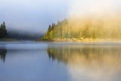 Ajardine con el bosque, la niebla y el lago de la montaña por mañana Fotografía de archivo