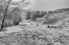 Ajardine con el camino de tierra abajo en la mañana del invierno en Ucrania central Imágenes de archivo libres de regalías
