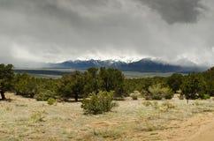 Ajardine con el cielo azul y los árboles en Colorado Fotografía de archivo