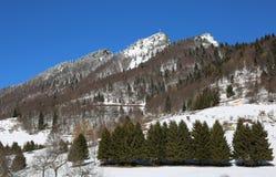 Ajardine con la alta montaña nombrada SPITZ de TONEZZA en septentrional fotografía de archivo